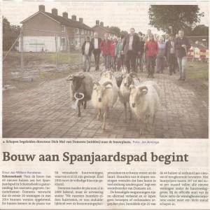 schapen schoonebeek16092013 001